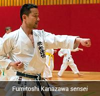 Fumitoshi Kanazawa